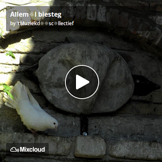 https://www.mixcloud.com/straatsalaat/alleml-biesteg/